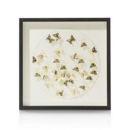 Ukrasna slika, Butterflies
