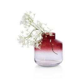 Ukrasna vaza, Aria
