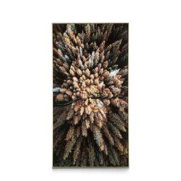 Ukrasna slika, Pine wood