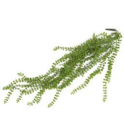 Dekoracija, Ficus pumila